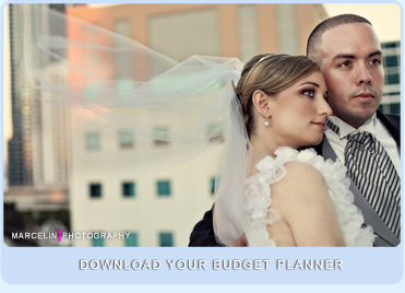 download your miami wedding budget planner